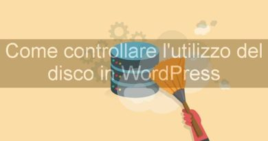 come controllare l'utilizzo del disco con wordpress